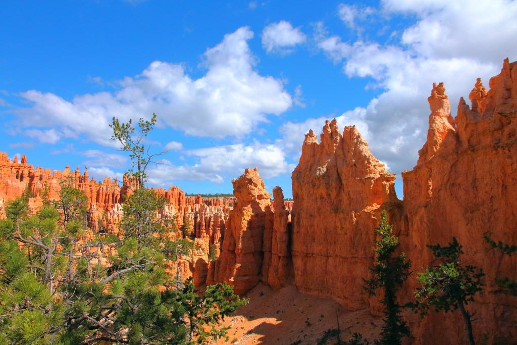 Национальный парк сша фото свежие