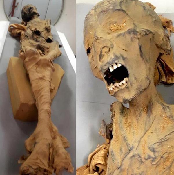 реальные фото мумии с луны стрижек асимметрией, способы